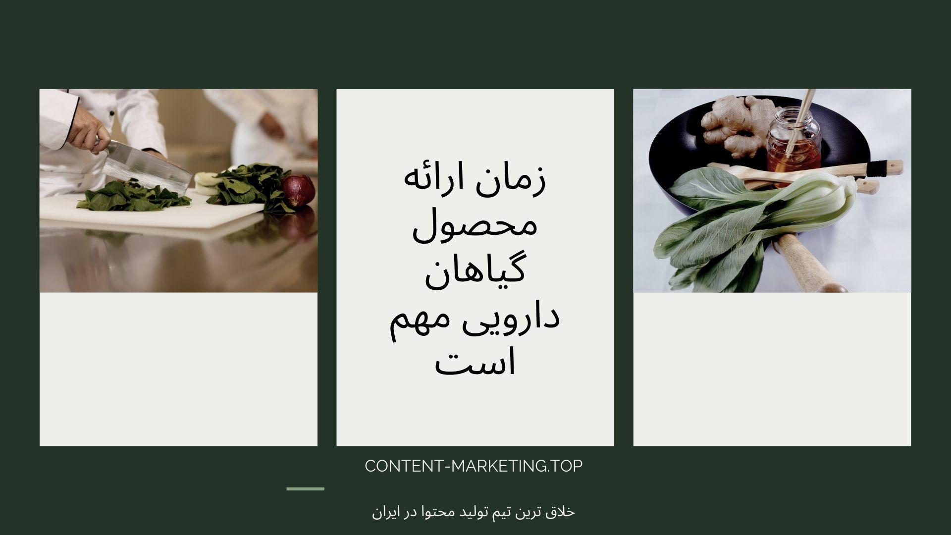 زمان ارائه محصول گیاهان دارویی مهم است
