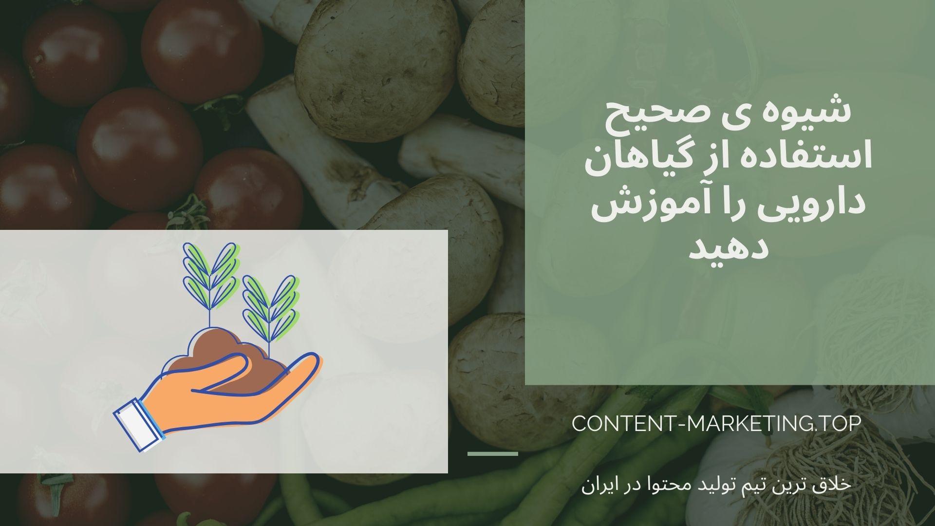 شیوه ی صحیح استفاده از گیاهان دارویی را آموزش دهید